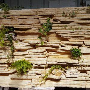 מפל קיר מים טבעי