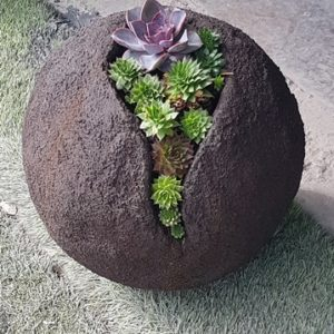 מזרקה לגינה בצורת כדור עם סקולנטים
